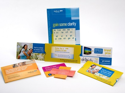 Blue Cross Blue Shield Direct Mail Campaign Thumb Image