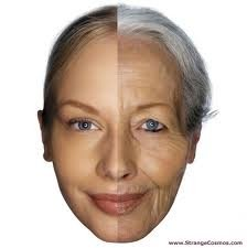 11AntiAging