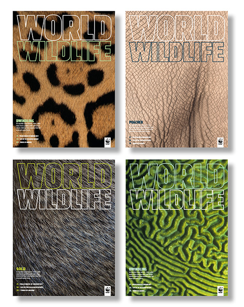WWF_Covers2